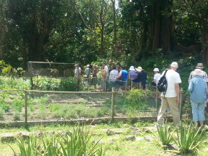 Going through the  planter's  garden with guests from the 2013/14 tour season.