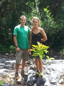 Admiring a newly planted coffee tree