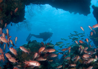 A Top Dive Destination